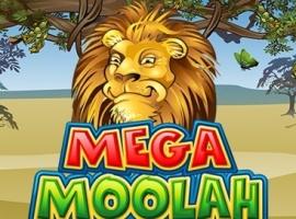 Machen Sie auch Ihr Vermögen mit Mega Moolah online Jackpot!